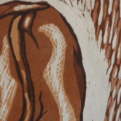 beandetail2.jpg
