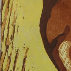 beandetail4.jpg