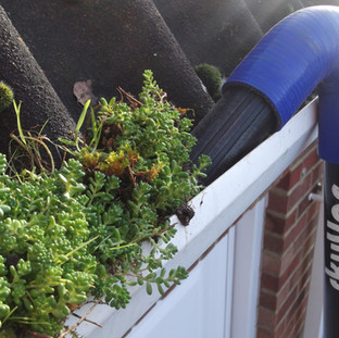 best - gutter - cleaning - company