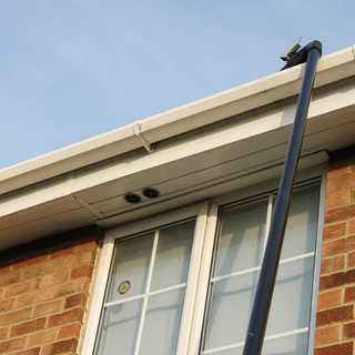 gutter - cleaning - company