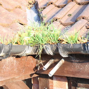 gutter - cleaning - service - near - me