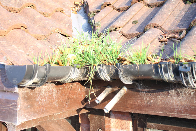 How Important is Keeping Your Gutters Clean?