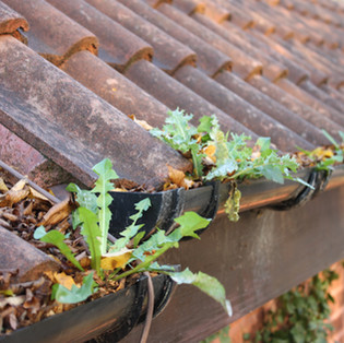 best - gutter - cleaning - service