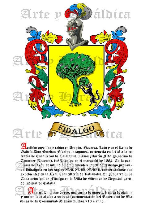Fidalgo PDF