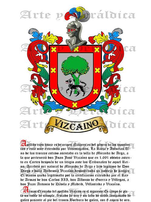 Vizcaino PDF