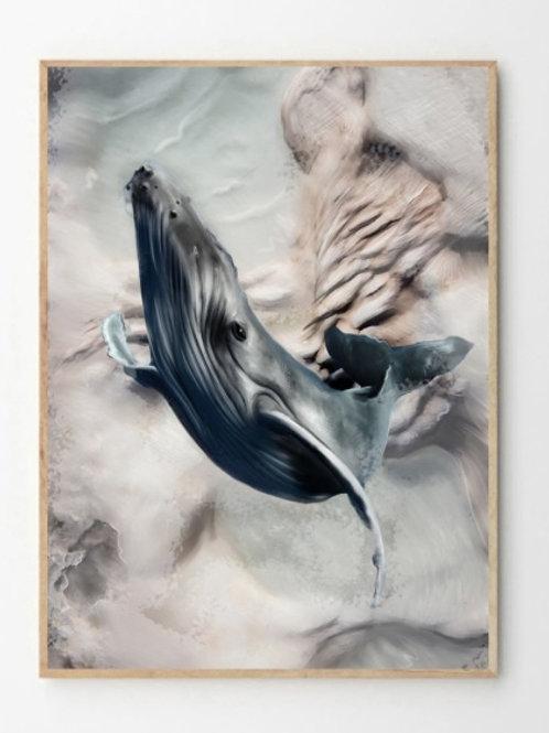 Hval / Whale