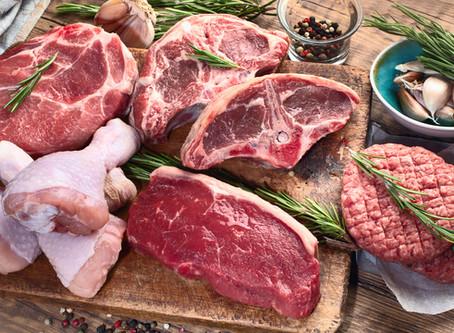 Carnivore Diet: Part 1