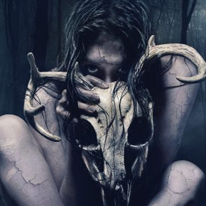 REVIEW: Horror flick 'The Wretched' serves up little scares