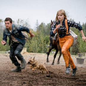 Review: 'Chaos Walking' isn't totally chaotic but it's not great either