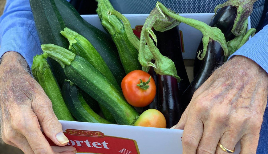 Collita de verdures i hortalisses