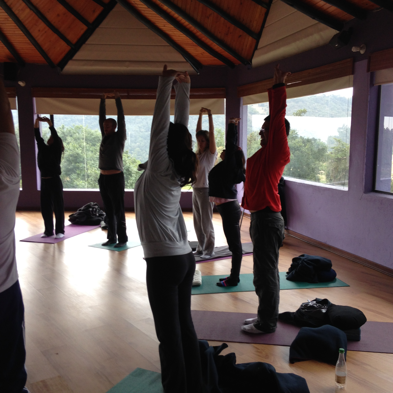Hatha Yoga movimientos conscientes.