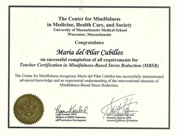 Diploma Umass.jpg
