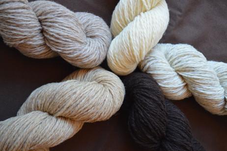 Echeveaux de laines 1/2 sport