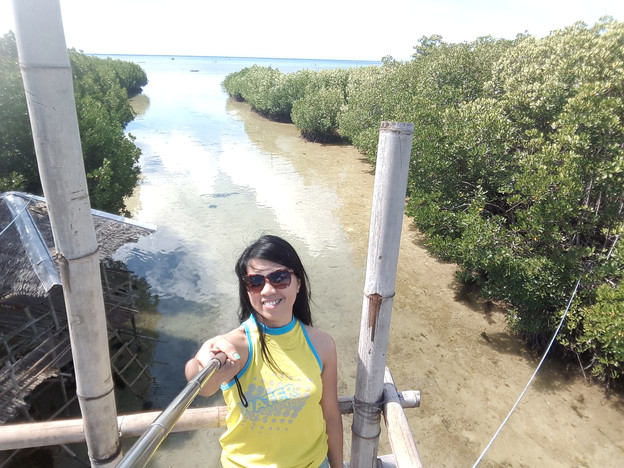 at the top of Omagieca Obo-ob Mangrove Garden's tower