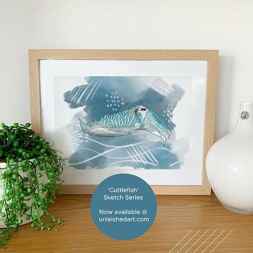 Cuttlefish - sketch series