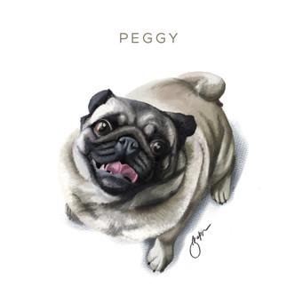Peggy the Pug - Digital Illustration