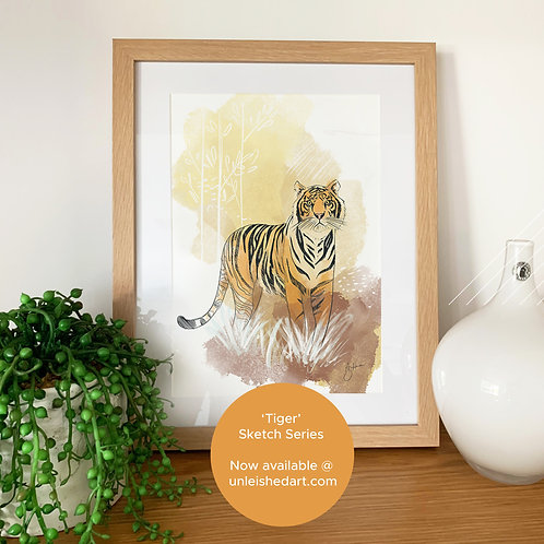 Tiger - sketch series