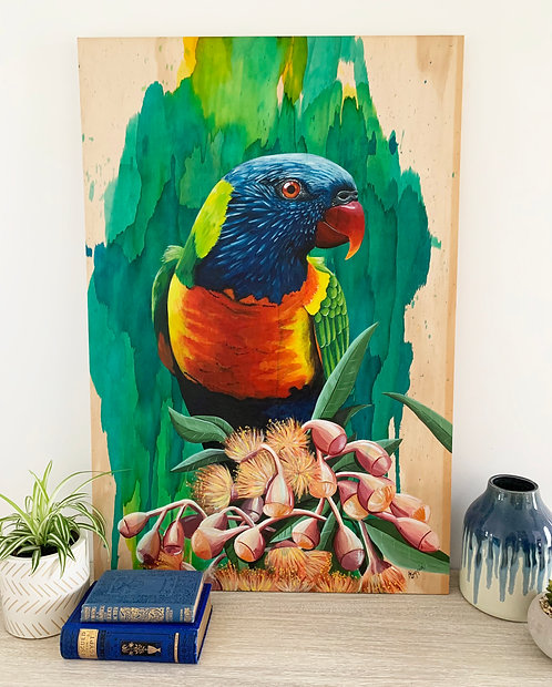 SOLD- Rainbow lorikeet