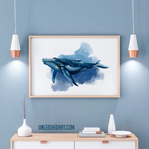 humpback whale illustration