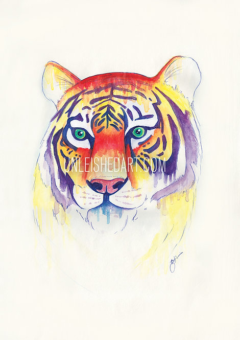 Tiger Limited Edition Print
