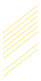 yellow lines.png