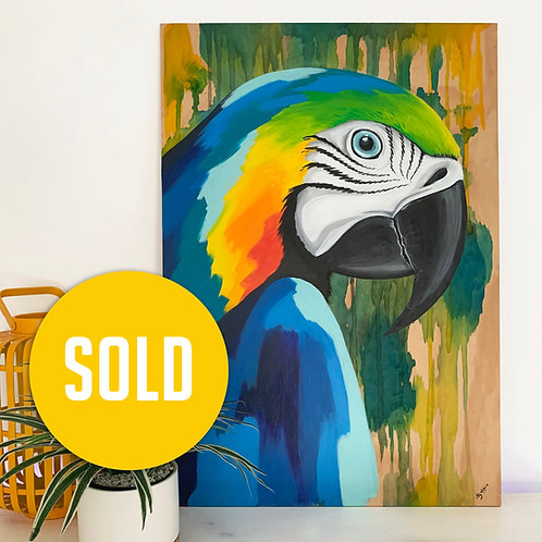 Blue & gold macaw (600mm x 900mm)