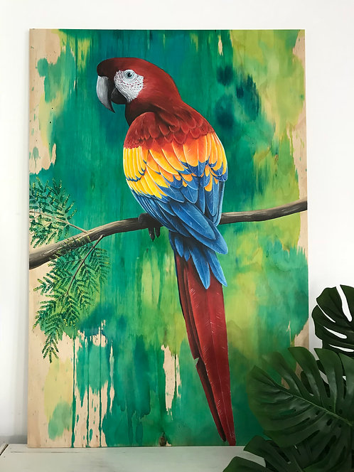 SOLD - Scarlet Macaw