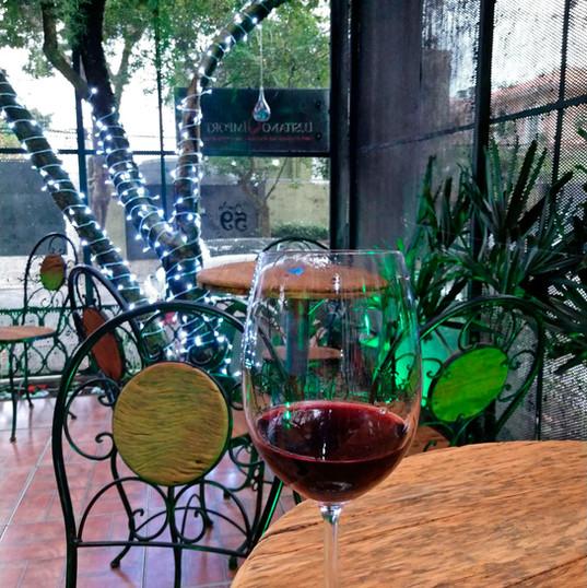 Nosso Espaço reservado para apreciação de vinho e conversas.