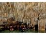 Playa del Carmen, Mexico Rio Secreto Caves, December 2012