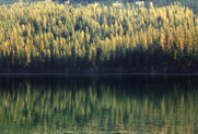 Kintla Lake - GNP- Circa 1989