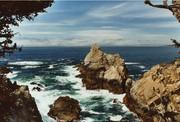 Point Lobos - Carmel, CA 2015