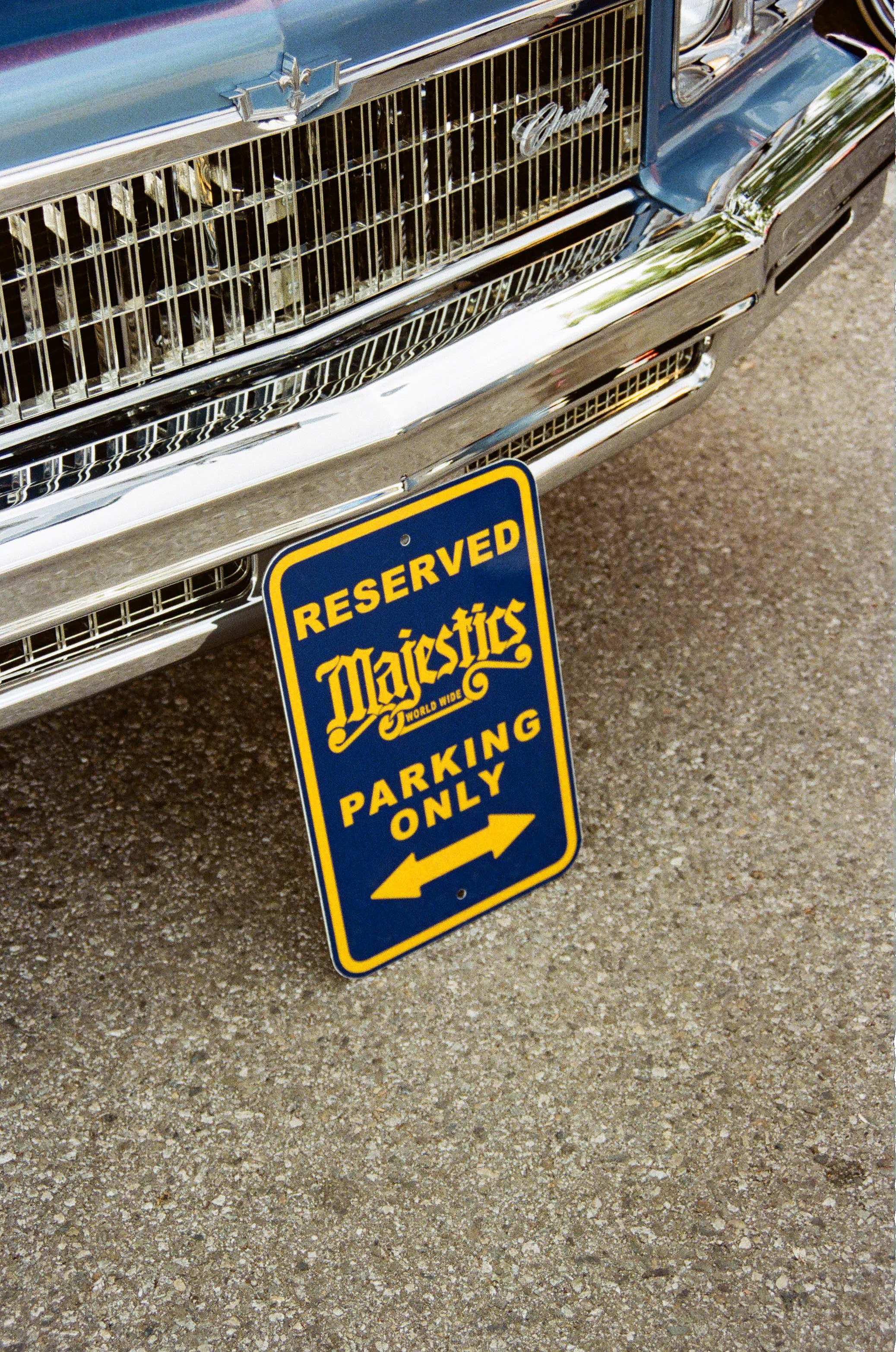 Majestics 25th Anniversary Picnic