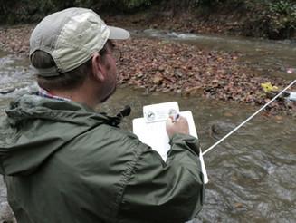 Save Our Streams: Get to Know Loop Creek
