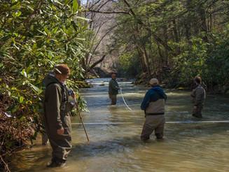 Loop Creek SOS: November 4, 2017