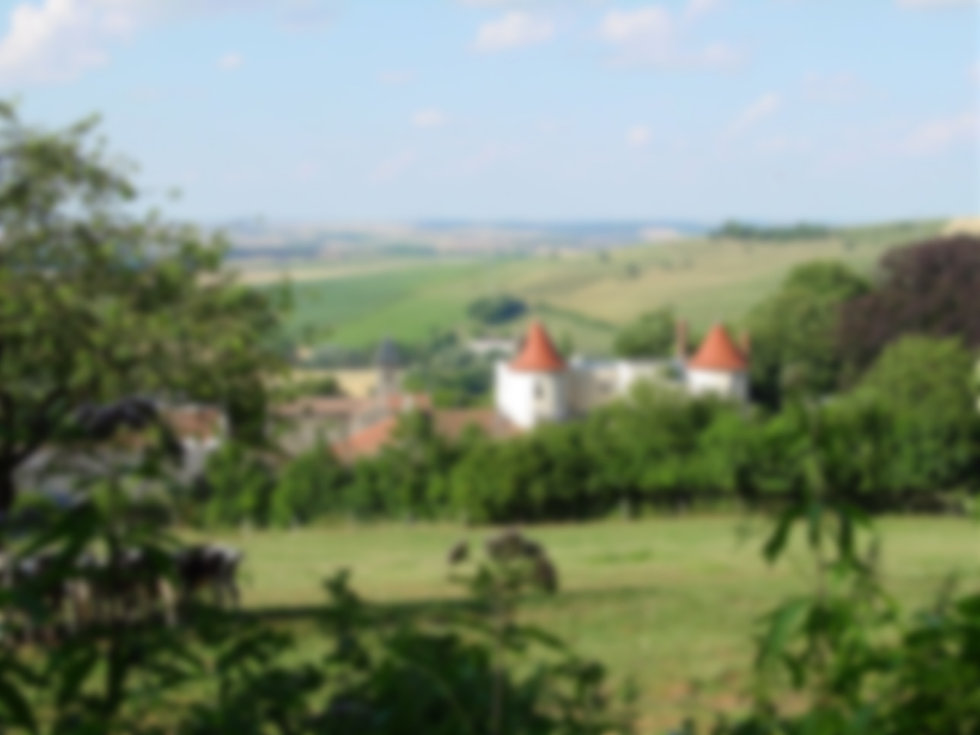 Commune-artisans-belleau.JPG