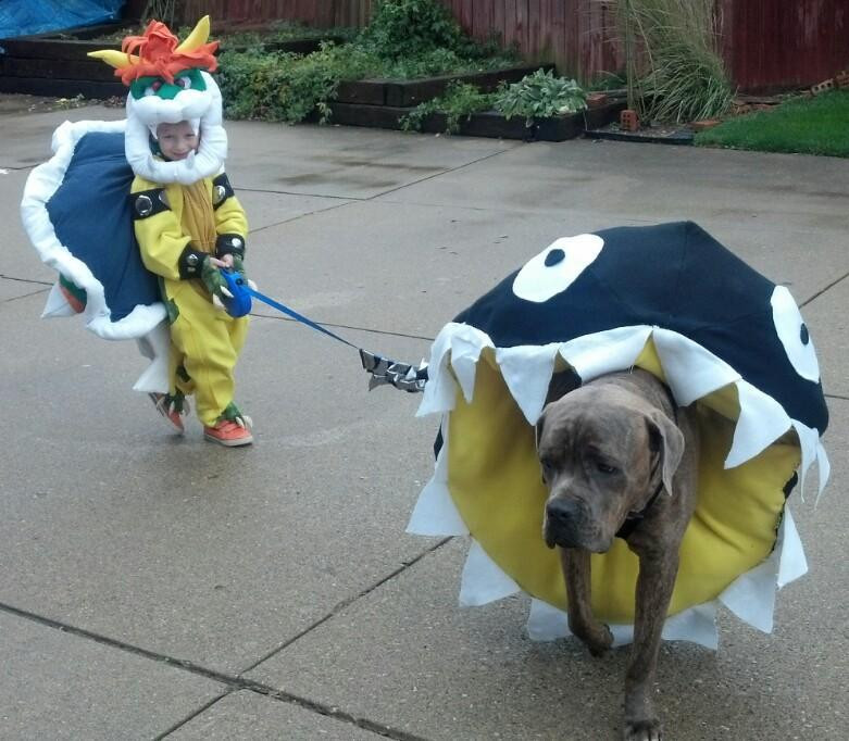 Child and dog in coordinating costumes
