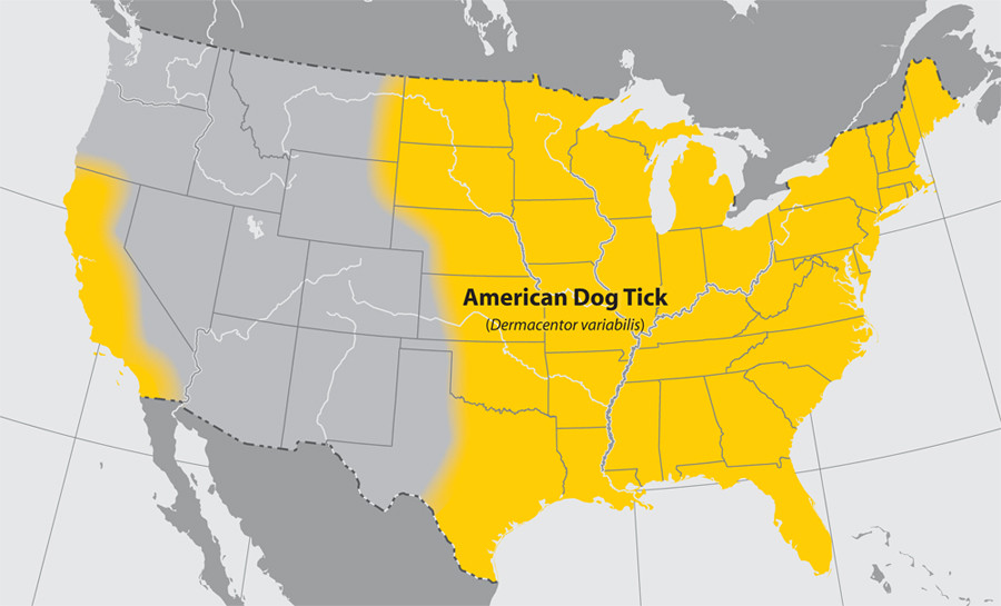 Map of American dog tick geographical range