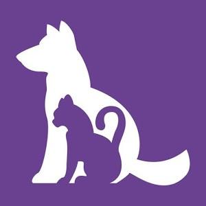 RVC Pet Diabetes App Picture