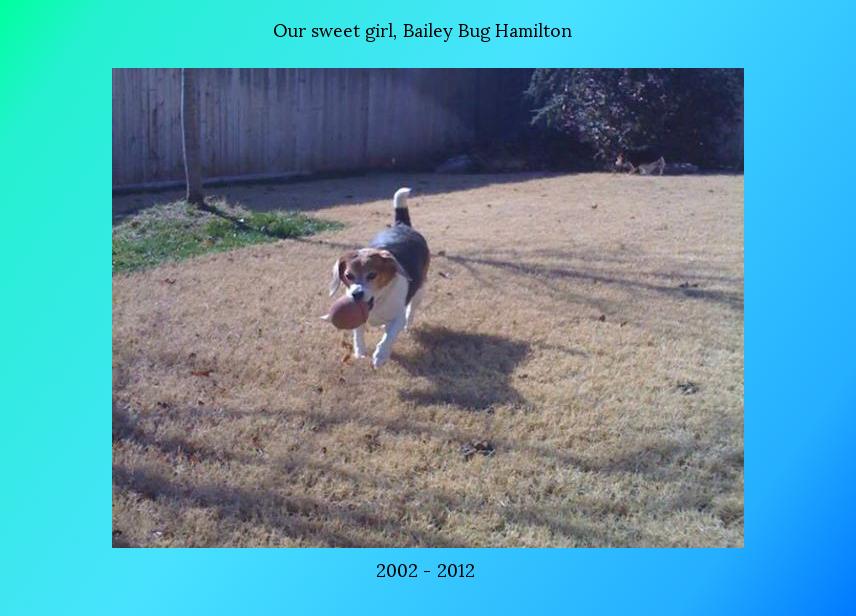 Bailey Bug Hamilton
