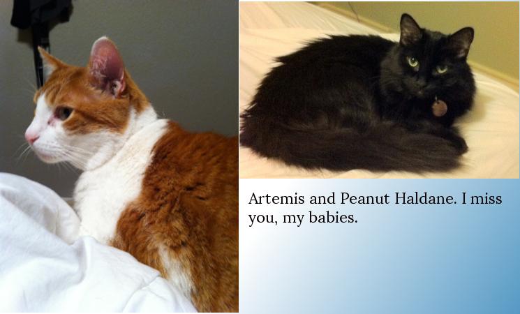Artemis and Peanut Haldane