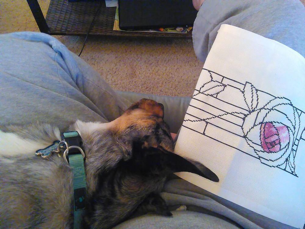 Cross Stitch pattern with Wash on Kelly's lap