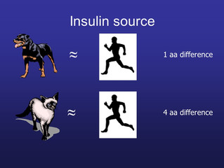 Diabetes Mellitus Part 2 - Insulin Therapy