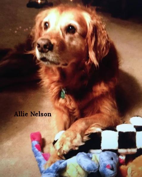 Allie Nelson