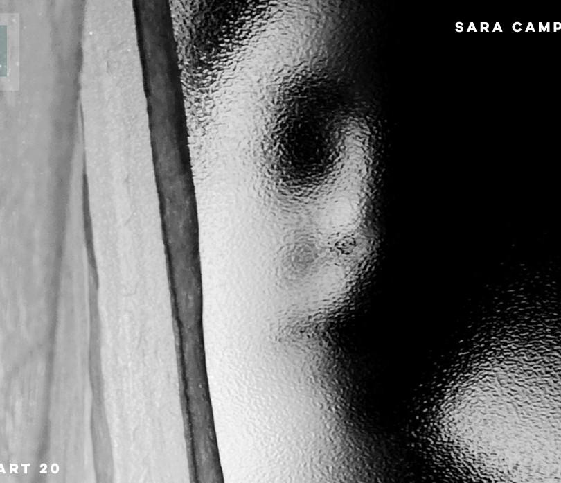 Sara Camporesi Special issue Covid 19