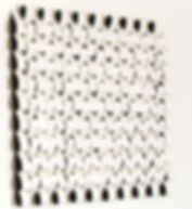 2 b.jpg