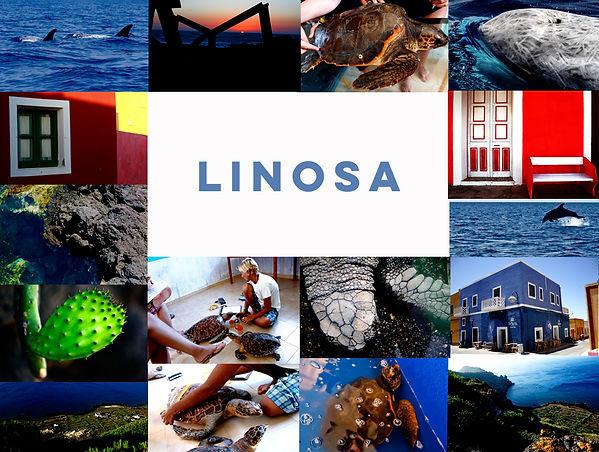 Linosa cover sito.jpg