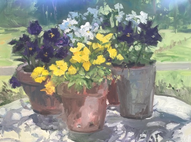Pots of Pansies with View to Pasture
