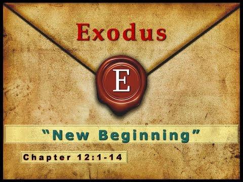 exodus image.jpg