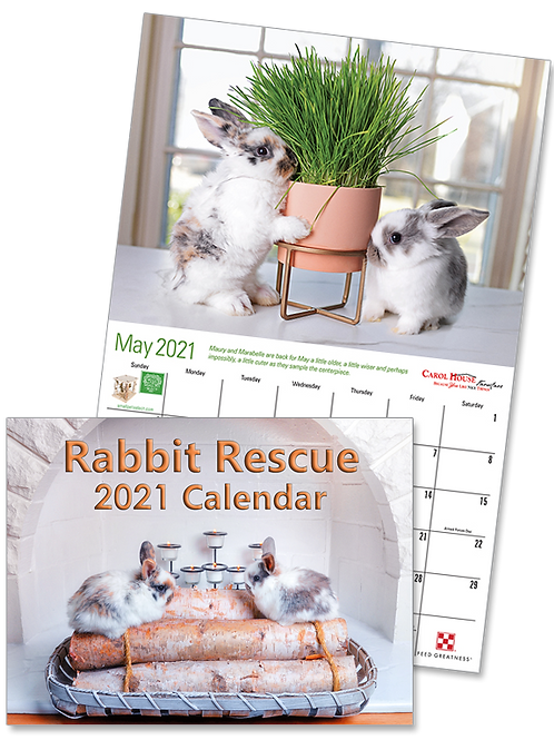 3 Bunny Calendars - 2021 Rabbit Rescue Featuring HRS Bunnies (3x quantity)