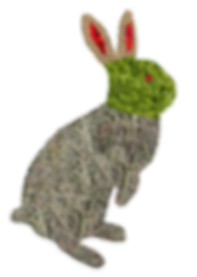 foodbunny.png